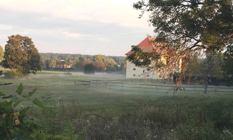 Morgendliche Idylle um die Römerstadt Carnuntum.
