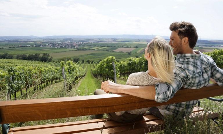 Perfektná bodka za návštevou v rímskom meste Carnuntum. Objavte krásy regiónu Römerland Carnuntum – Marchfeld. Ponúka skvelú kombináciu zážitkov z kultúry, kulinárskych podujatí a množstvo výletov do prírody.